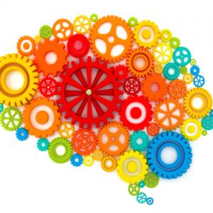 Permalink auf:Lerntipps von der Hirnforschung